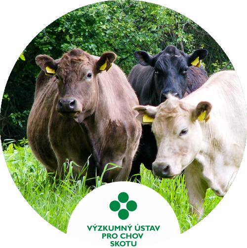 Vyzkumny ustav pro chov skotu, Ltd.